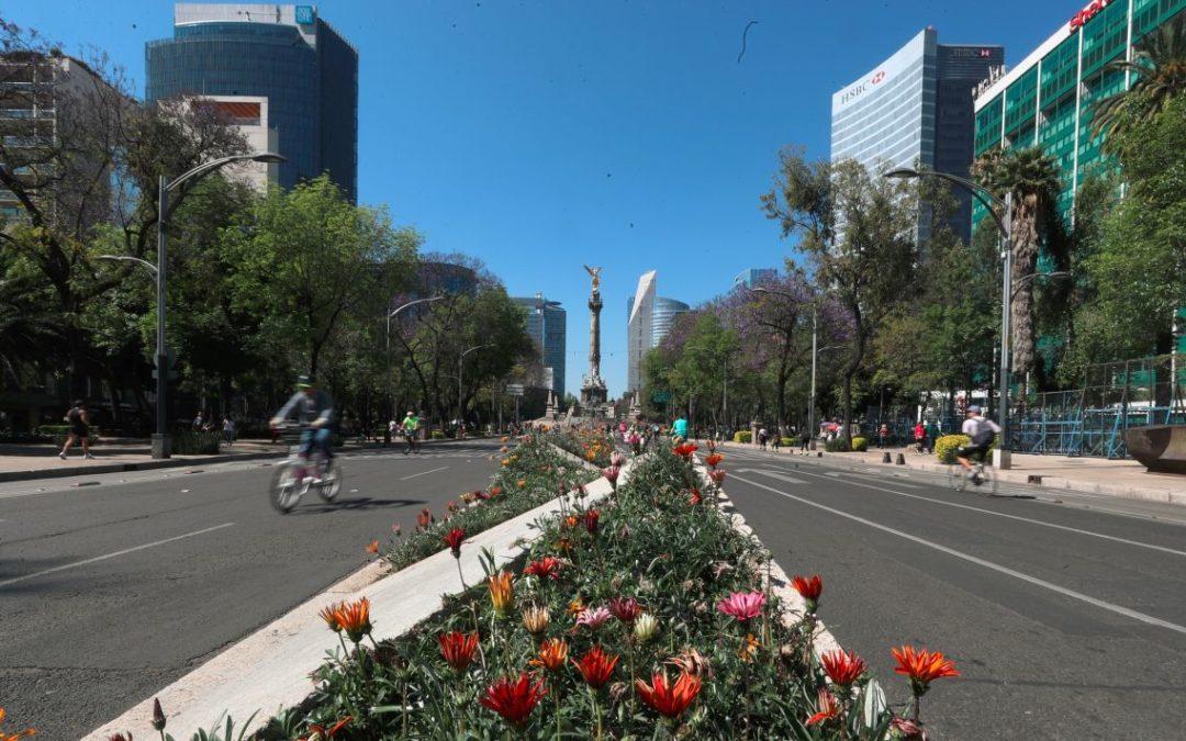 Economía mexicana se 'estanca' durante el inicio de 2019